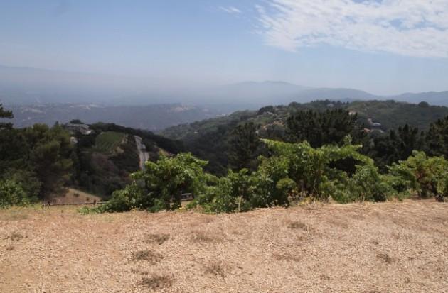 Ridge Vineyards Monte Bello のピクニックエリアからの下界。