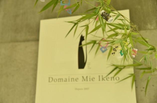 restaurant miuraさんのデザートにあった七夕飾りを持ち帰りドメーヌの玄関に飾ってみました。